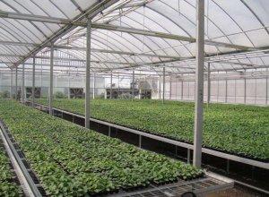 indoor agriculture HVAC